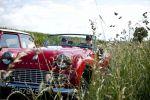 rallye-rotary-9212.jpg