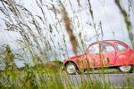 Rallye de la Goutte d'Huile 2012