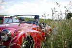 rallye-rotary-9213.jpg
